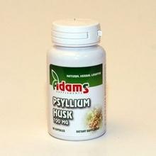 Psyllium Husk x 700 mg x 60 cps
