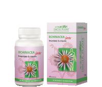 Echinaceea Forte x 60 cps, Dacia Plant 1+1 Gratis