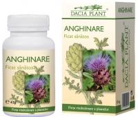 Anghinare x 60 cps 1+1 oferta, Dacia Plant