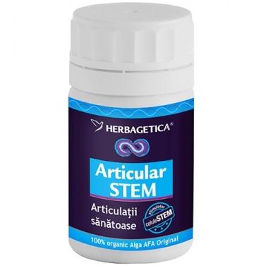 Articular stem 30cps