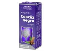 Gemoderivat Muguri de Coacaz Negru 50ml