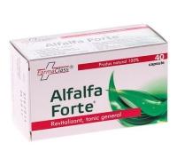 Alfalfa Forte 40cps