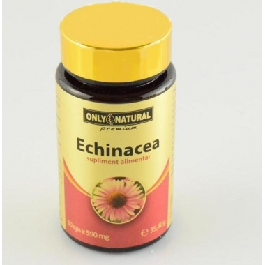 Echinacea 590mg 60cps