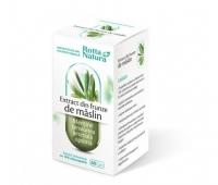Maslin Extract frunze 60cps
