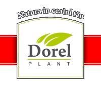 TINCTURA DE LEVANTICA 200ML, DOREL PLANT