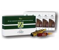 Gerovital Plant Kit de tratament pentru regenerarea parului
