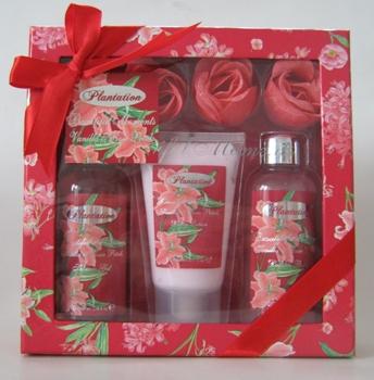 Set floral Red
