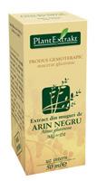 Extract de Muguri Arin Negru