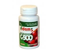 Vita C 500mg macese 30cps 1+1 GRATIS