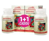Antiviral echinacea & astragalus 60cpr 1+1 GRATIS