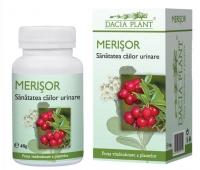 Merisor 60cpr