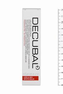 Decubal Stick Reparator Buze Uscate