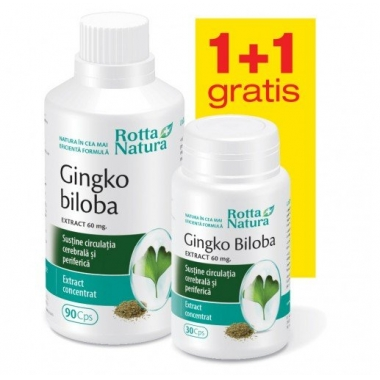 Ginkgo Biloba Extract 60mg 90cps + 30cps