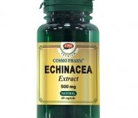 ECHINACEA EXTRACT 500MG 60CPS, COSMO PHARM - PREMIUM