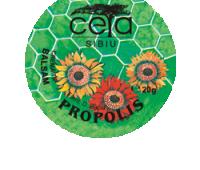 UNGUENT PROPOLIS 20GR/25ML (AUCHAN PROMO!), CETA