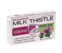 Milk thistle + colina 30cps ZDROVIT