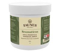 GEL REUMATICUS 250ML (UNT.PAM.TAT.&ARNICA)