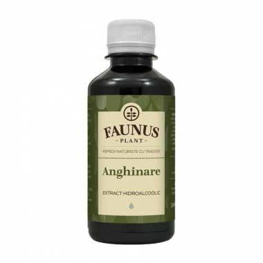 TINCTURA ANGHINARE 200ML