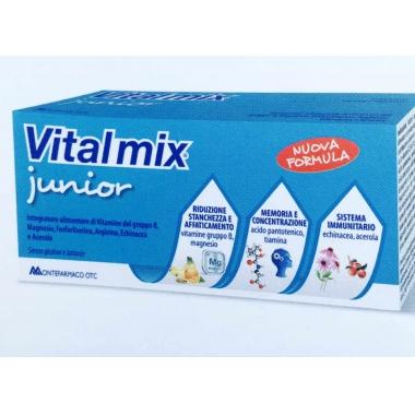 Vitalmix Junior*10FL