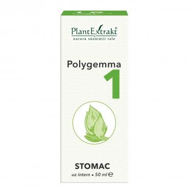 POLYGEMMA NR. 1 50ML(STOMAC)