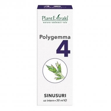 Polygemma 4, Sinusuri, 30 ml, Plant Extrakt