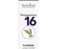 POLYGEMMA NR.16 50ML(PLAMANI-DETOXIFIERE)