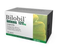 Bilobil Intens 120 mg, 60 capsule, Krka