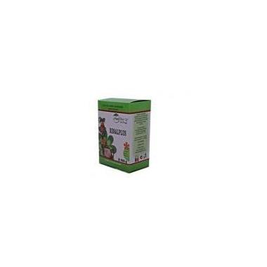 Ceai renalplus 100gr NATURA PLANT POIENI