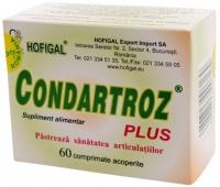 Condartroz Plus 60 compr.