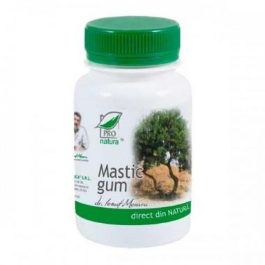 Mastic gum 60cps