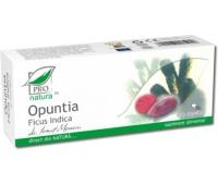 OPUNTIA FICUS INDICA 30 cps