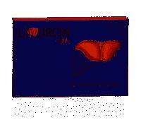 LIVURON HEPA 24CPS