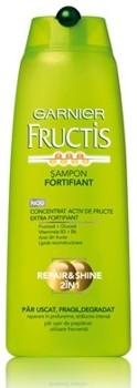 Garnier Fructis Repair&Shine 2 in 1