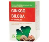Ginkgo biloba cu Magneziu 60 tablete