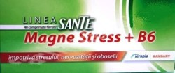 Magne Stress B6