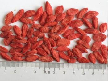 Goji Berry Fructe 500 gr